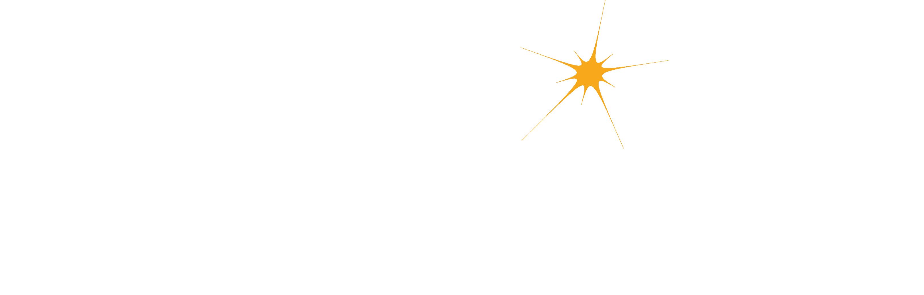 polestar_logo