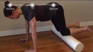 neutral spine alignment